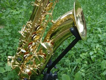 alto-sax-gold-laquer-2